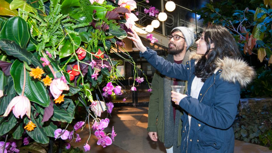 Афиша 8-10 февраля Couple exploring Orchid Festival After Hours 2019 crop