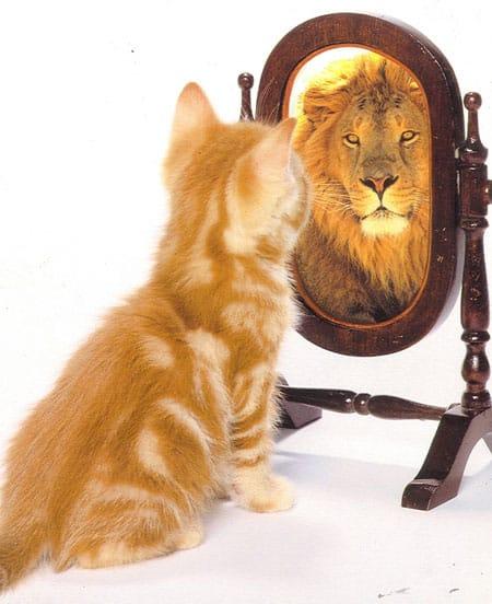 О самооценке и уверенности в себе