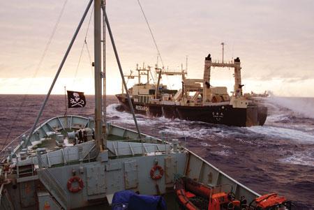 Sea-Shepherd Охотник за охотниками