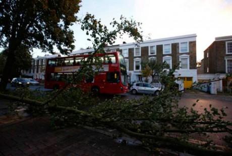 Fallen-trees- Шторм св. Иуды прошелся по Великобритании