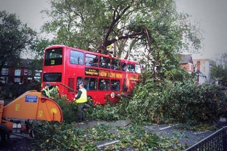Turnpike-lane Последствия шторма «Святой Иуда»: четыре жизни, 160 тысяч домов без электричества, транспортный коллапс