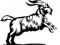 10zodiac5capricorne Школьный гороскоп: 21 - 27 сентября