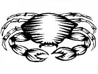 4zodiac4cancer Школьный гороскоп: 21 - 27 сентября
