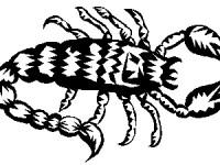 8zodiac9scorpion Школьный гороскоп: 21 - 27 сентября