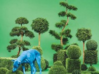 Snoop-dog-Bush CD-релизы: 9 июля