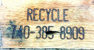 эко-кафе в школе Бедфорда