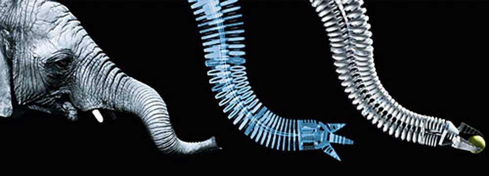 Пьезомуха. И еще 5 бионических роботов