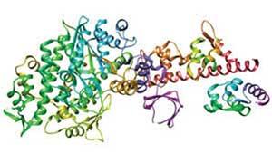 Мотор в 16 атомов: изобретения эпохи пандемии