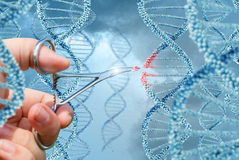 Симбиоз: биотехнология удачного сожительства
