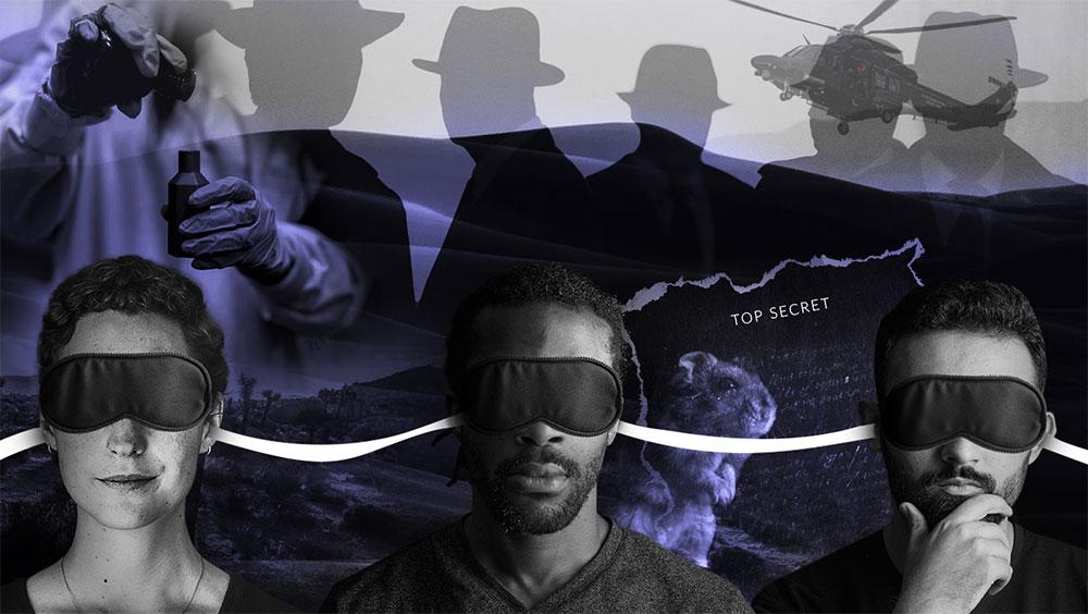 Лучше, чем сон наяву, и реальнее, чем любая VR-игра