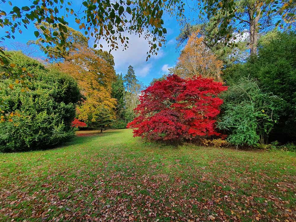 Осень в Британии. Куда отправиться за яркими красками и впечатлениями